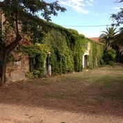 Avstyckad vingård med pool och utvecklingsmöjligheter