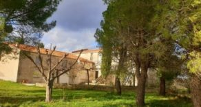 Fd vingård; hus, stenlada och 2 hektar mark