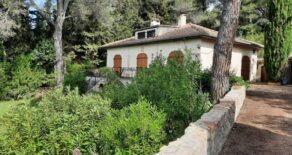 Villa med pool och olivlund
